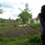 Ljubljana_Community_Gardens