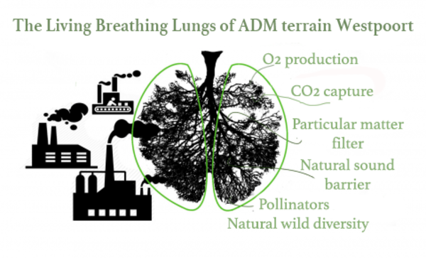 living_breathing_lungs_ADM_Westpoort_Amsterdam